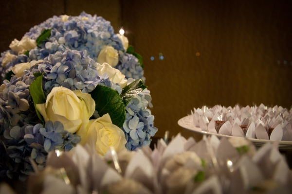 17 Azul e branco