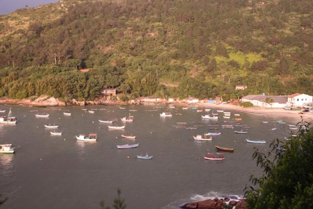 thumb img 8239 1024 copy Ponta dos Ganchos, Santa Catarina