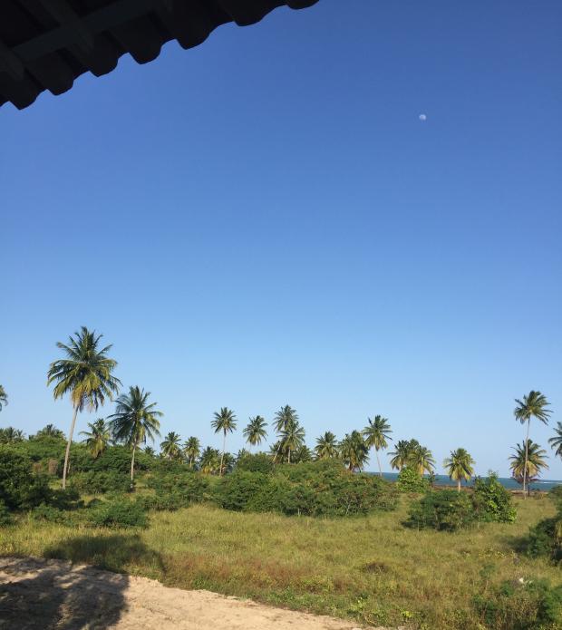 3 Lua de Mel: São Miguel dos Milagres