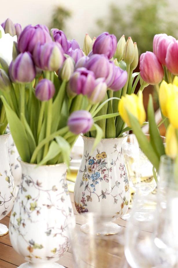 tulipas 4 Tulipas para o centro da mesa
