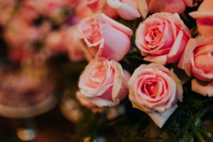 casamento mari nobrega 39 300x200 CASAMENTO MARI NÓBREGA 39